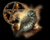 Voodoo spell, break up spell, divorce spell, death spell, love spell, spells caster, black magic, magic spells, bring back, lost lover, ex- lover , Voodoo priest, voodoo spells caster in California, san Diego, san Francisco, Sacramento, Colorado, Denver, Connecticut, Hartford, Delaware, Dover, Florida